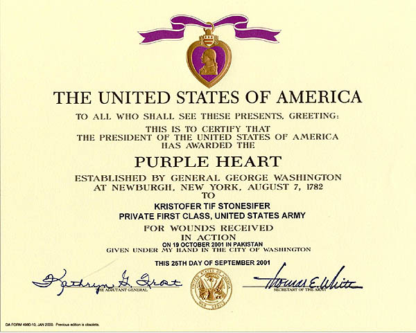 Denial of Purple Heart medals raises questions about casualty count